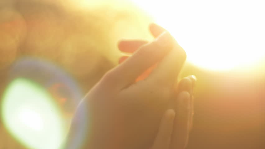 Close-up of woman taking care of her hands in nature. Natural pure beauty of soft hands against the sun. | Shutterstock HD Video #20127622