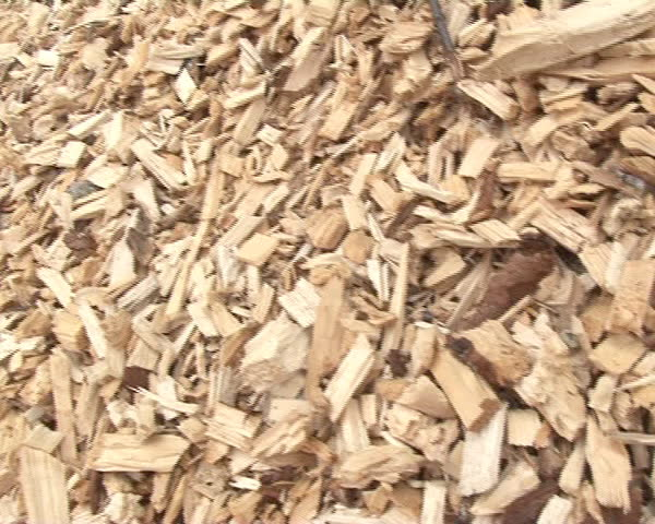 closeup of pile of shavings sawdust chips. ecological renewable biofuels from wood.