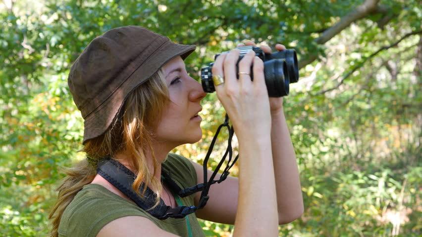 Female birdwatcher brings binoculars up to look at something.  #21330625