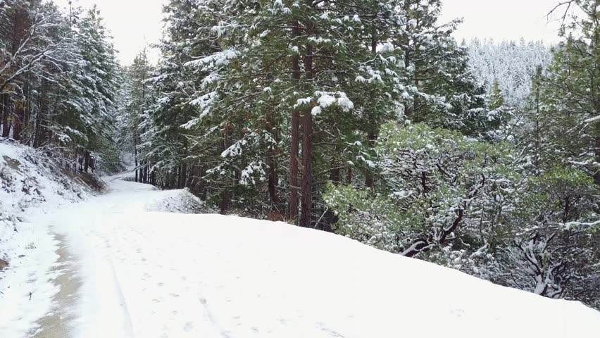 Rising above the trees with a drone to reveal a snowy landscape | Shutterstock HD Video #22035586