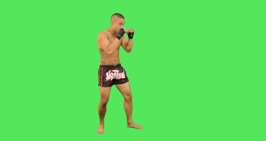 Thai male boxer fighting  - HD stock video clip