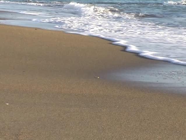 beach - SD stock footage clip
