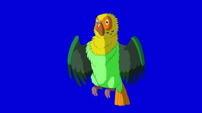 Green  Parrot Gets Angry. Animal on Blue Screen. Looped motion graphic. | Shutterstock HD Video #23184841