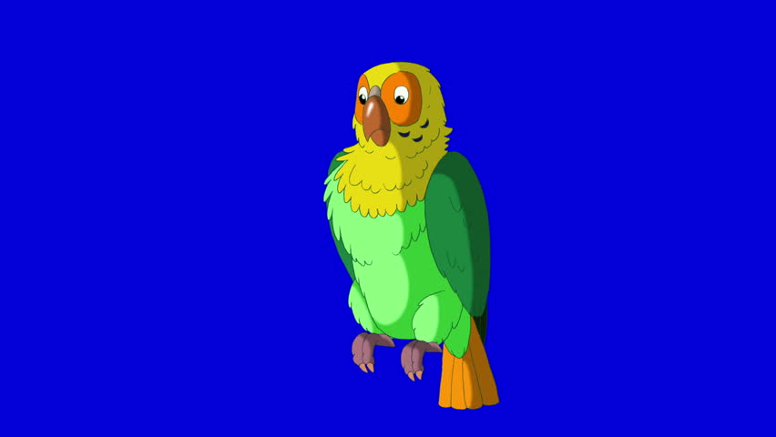 Green Parrot Greets. Animal on Blue Screen. Looped motion graphic. | Shutterstock HD Video #23184859