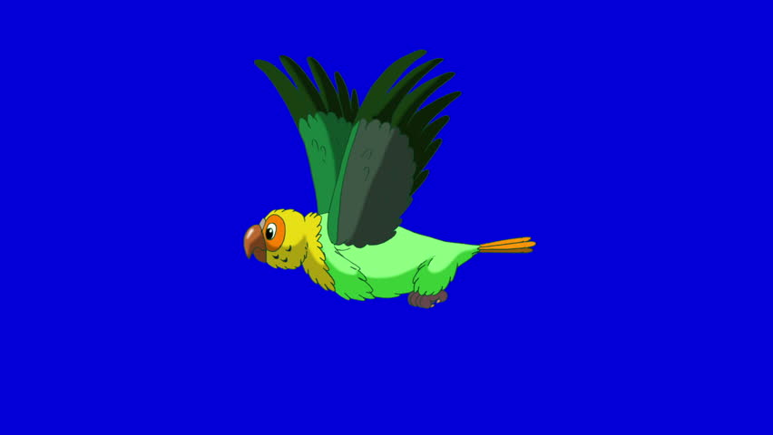 Green Parrot Flies. Animal on Blue Screen. Looped motion graphic. | Shutterstock HD Video #23184886