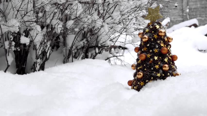 Christmas Trees in the Snow. Winter, a lot of snow. | Shutterstock HD Video #23206783