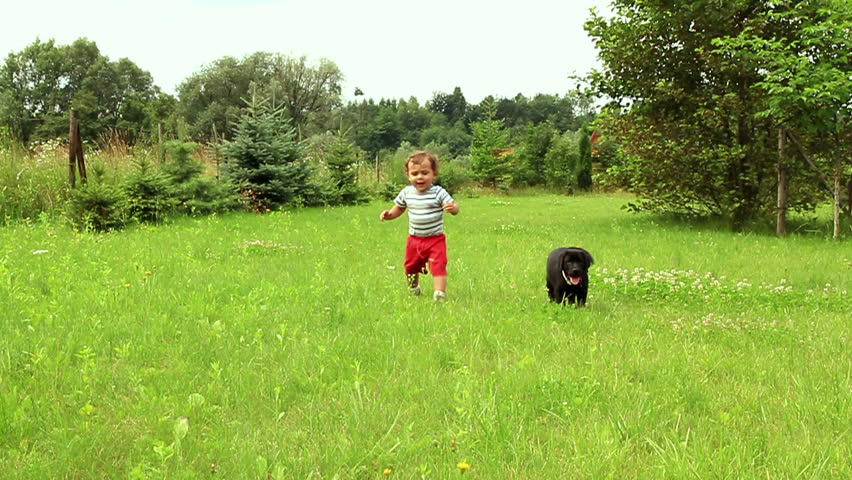 Young baby boy playing with little dog on the grass, slow motion - HD stock video clip