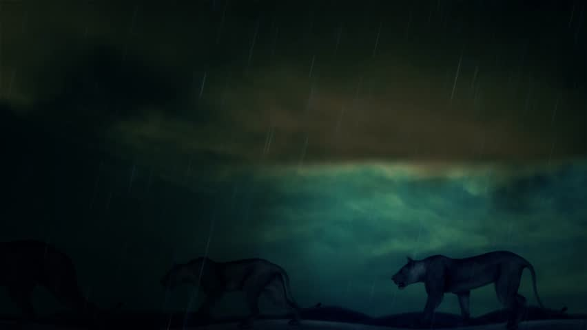 Animation of a Female Lions Walking Under a Lightning Storm | Shutterstock HD Video #23838340