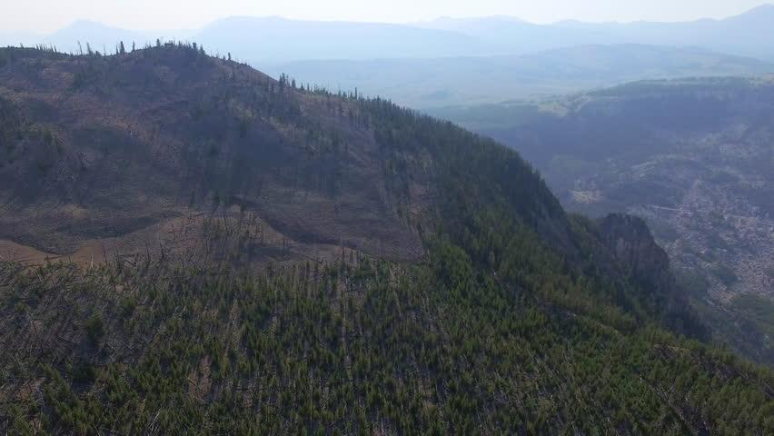 Camera pans across a thin forest and vast fields far below | Shutterstock HD Video #24108088