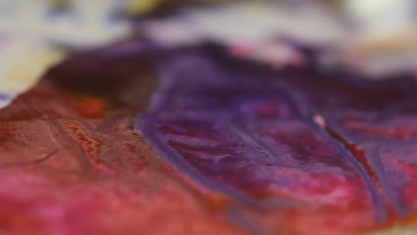 Artist in her art studio paint brushes and ink paintings | Shutterstock HD Video #24113146