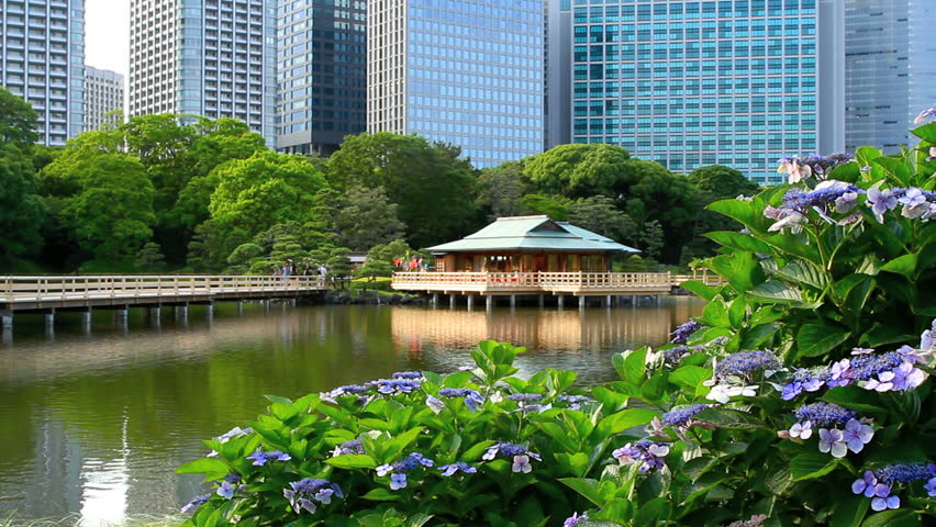 Spectacular contrast between the traditional Tea-house with Shiodome's skyscrapers in the background.