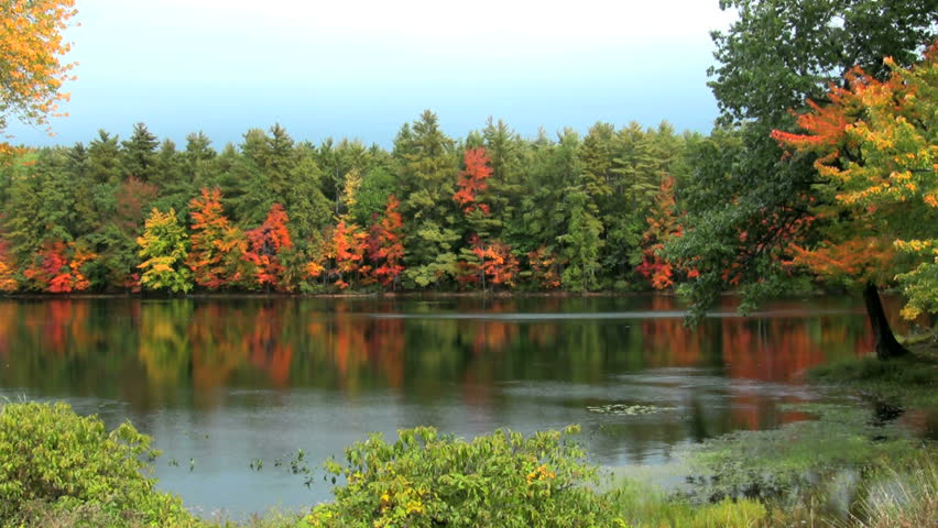 HD zoom in on fall foliage reflections on a Maine pond with a breeze on the water - HD stock footage clip