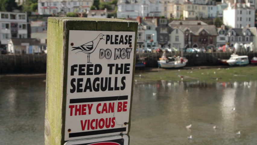 Do not feed the seagulls sign at Looe, Cornwall