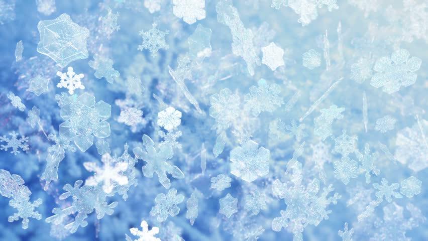 HD - Motion 311: Snowflakes falling (Loop). - HD stock video clip