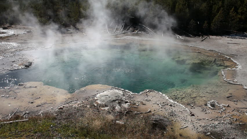 Clear water geyser in the Norris Geyser Basin, Yellowstone National park, Wyoming. Surrounded by forest that has burned and new growth. Hot steam geothermal feature. Beautiful blue water. - HD stock footage clip