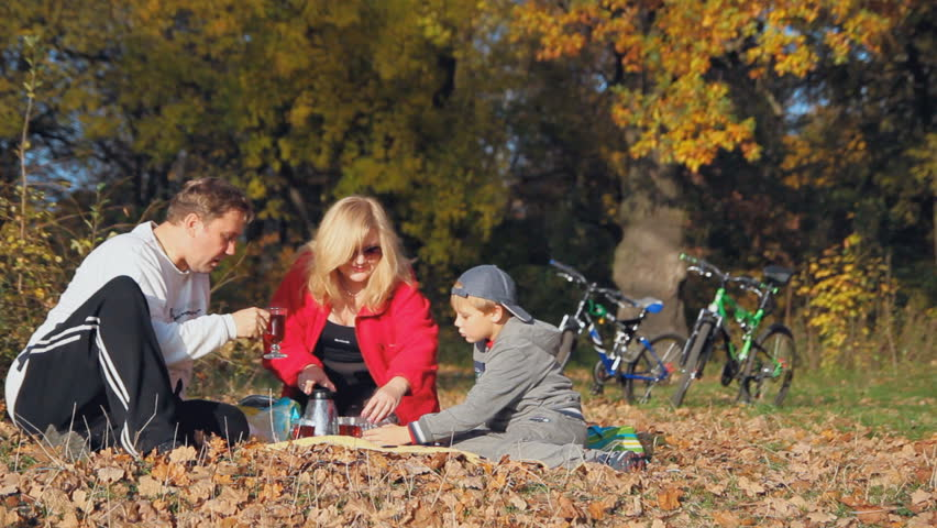 active recreation, picnic, happy family, family vacation - HD stock video clip