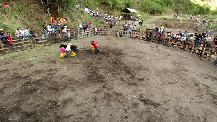 BANOS DE AGUA SANTA,ECUADOR - 28 OCTOBER 2012:Improvised bullfights for the city ceremony gives people the opportunity to try out their skills in bullfighting - HD stock video clip