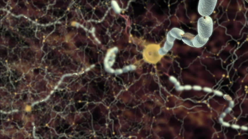Animation of flashing red scarring damage or inflammation of myelin sheath due to autoimmune disease multiple sclerosis resulting in slowed propagation of action potential along axon of CNS  - HD stock video clip