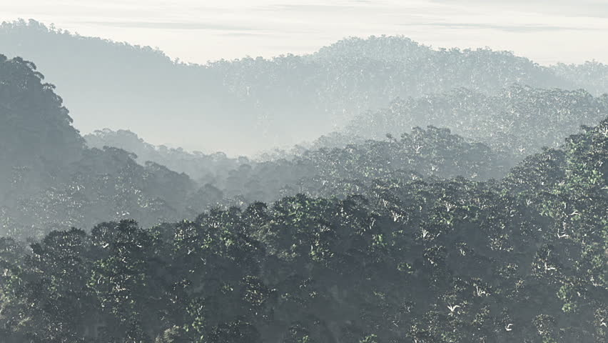 Jungle aerial 3D render - HD stock footage clip