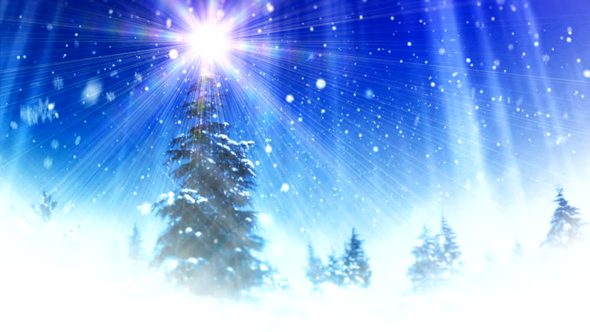 New Year Forest background ( Series 3 - Version from 1 to 12 ) - HD stock footage clip