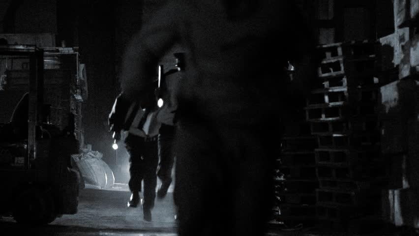 Edited Police operation. Criminal pursuit.