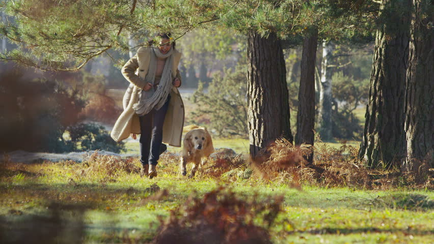 Attractive young couple are exercising their dog and running through a sunlit forest on a cool bright autumn morning. In slow motion. - HD stock footage clip