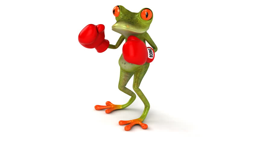 Fun frog with boxing gloves - HD stock video clip