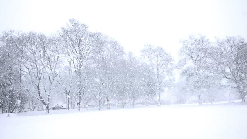 """Résultat de recherche d'images pour """"free image snow"""""""