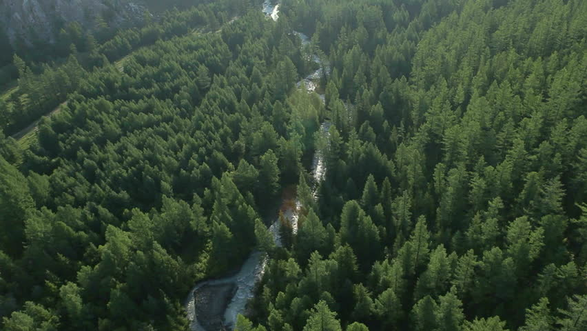 Aerial View. Flying over the beautiful mountain River and beautiful forest. Aerial camera shot. Altai, Siberia. | Shutterstock HD Video #3213778