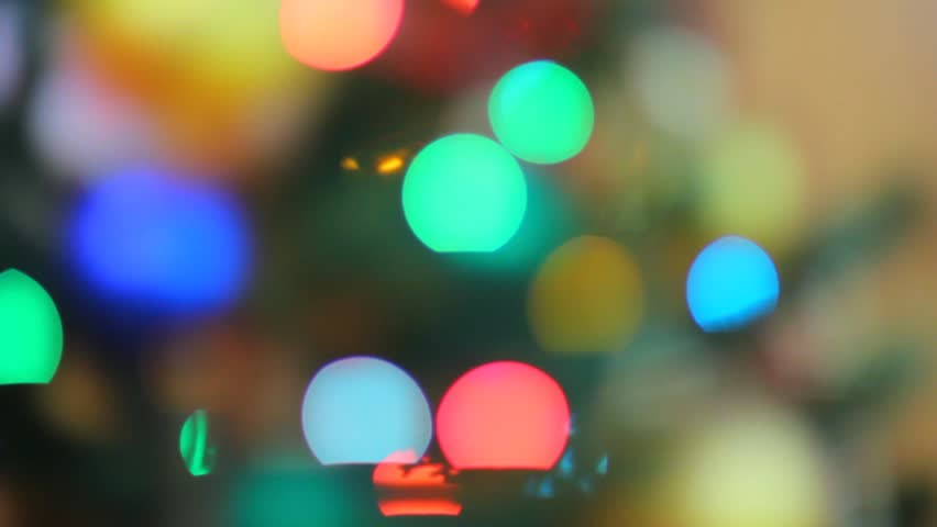 Christmas garland lights on pine tree out of focus. Colorful garland lights are sparkling on the background. Red, blue, and yellow electric lights turning on and off.   - HD stock footage clip