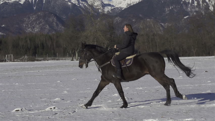 SLOW MOTION: cantering on a snowy field - HD stock footage clip