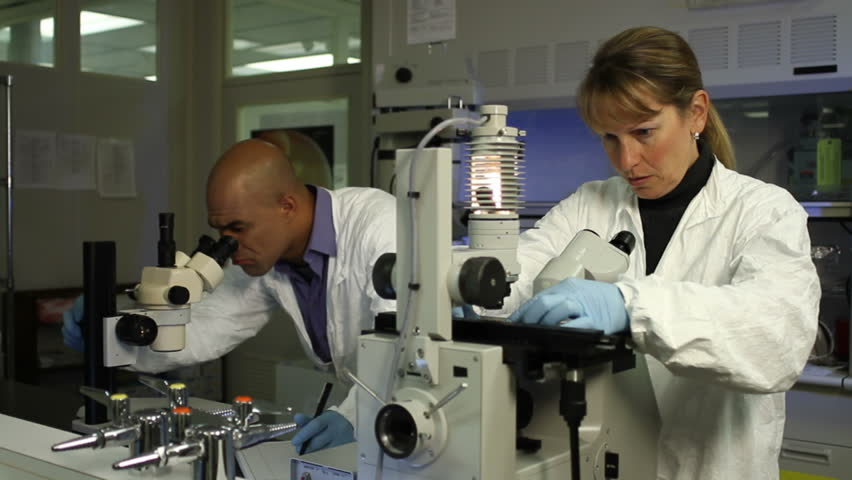 Two scientists carry out research, looking through microscopes. Medium shot with a dolly move in to a close up of the woman in the foreground. - HD stock footage clip