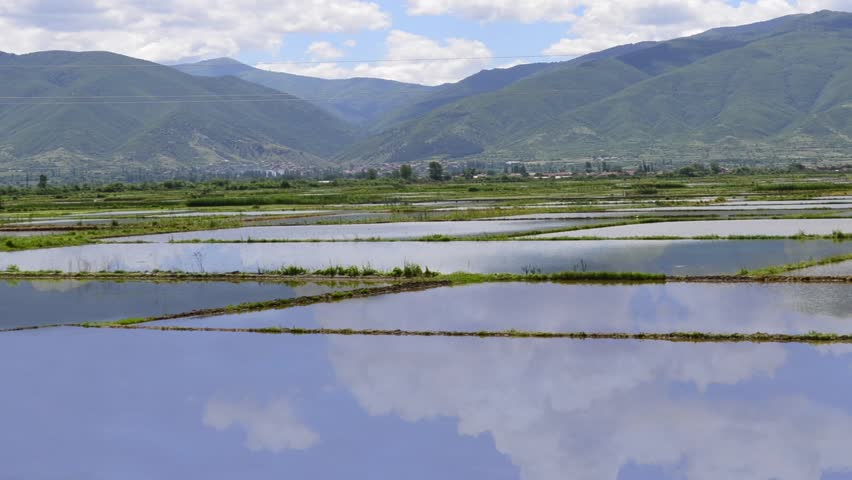 Rice paddy fields - HD1080i TIMELAPSE, Water filled rice fields parcels ready