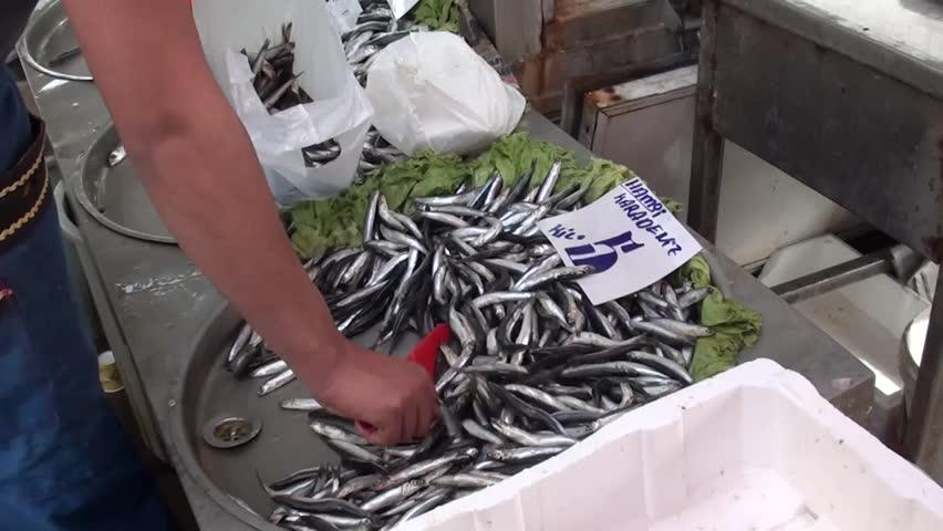 PENDIK, ISTANBUL, TURKEY – April 6, 2013: Farmers' market – fresh Anchovy at sale