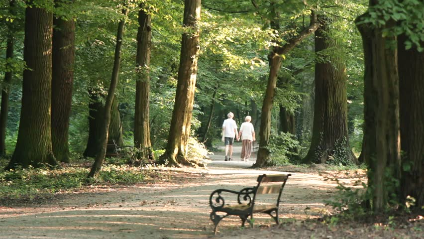 An Elderly Couple Walks Down A Forested Path, Holding