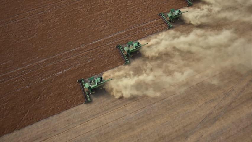 Four combines harvesting lentil field on the Saskatchewan Prairie aerial view