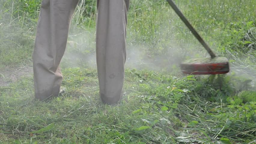 how to cut wet grass