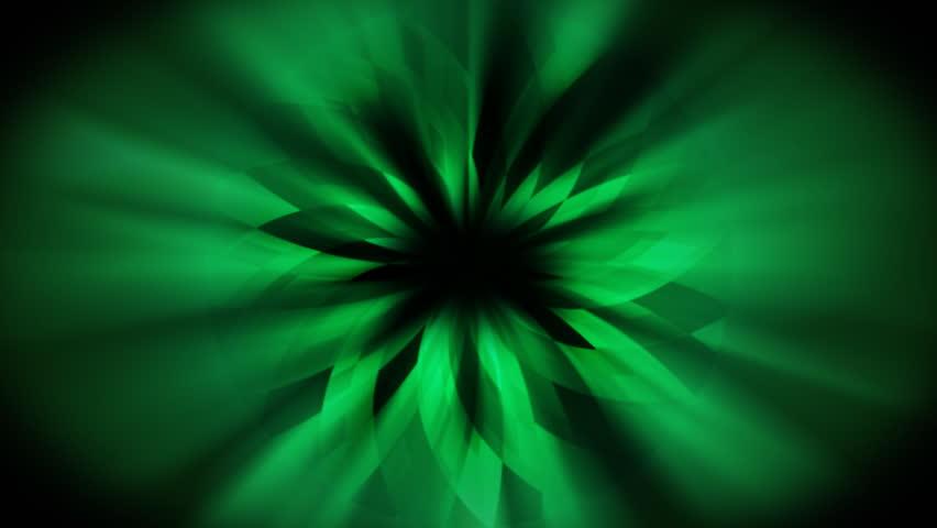 Loopable Dark Green Background / Flower Design / Shining ...