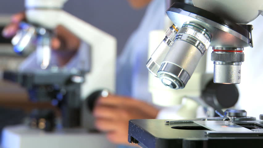 Researchers working in lab with microscope, close up - HD stock footage clip