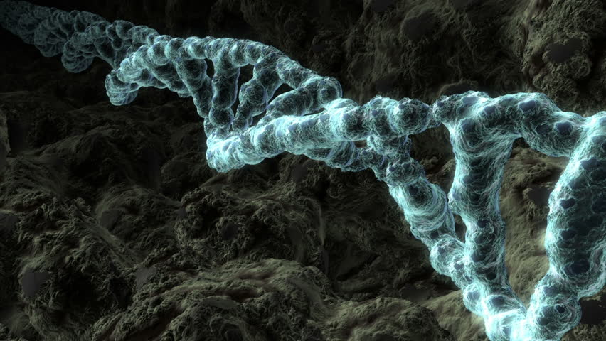 Three dimensional animation of a DNA strand revolving.