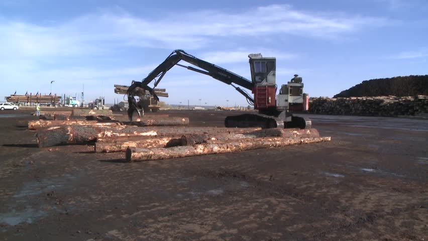 LOG PICKER DOZER AT LUMBER MILL LOGGING  TREES WITH HEAVY EQUIPMENT WIDE SHOT HD HIGH DEFINITION STOCK VIDEO FOOTAGE 1080 1920X1080 - HD stock footage clip