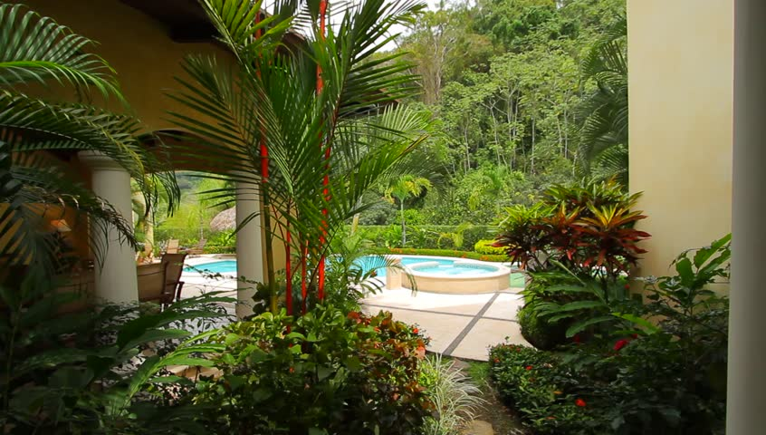 Tropical residential pool trees a shot of tropical for Pool design costa rica