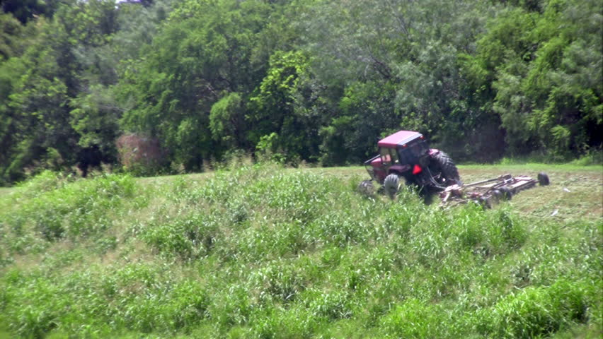 Video closeup of tractor mower cutting long weeds on river bank. Birds flying in to eat bugs. Rain and drizzle day. - HD stock footage clip