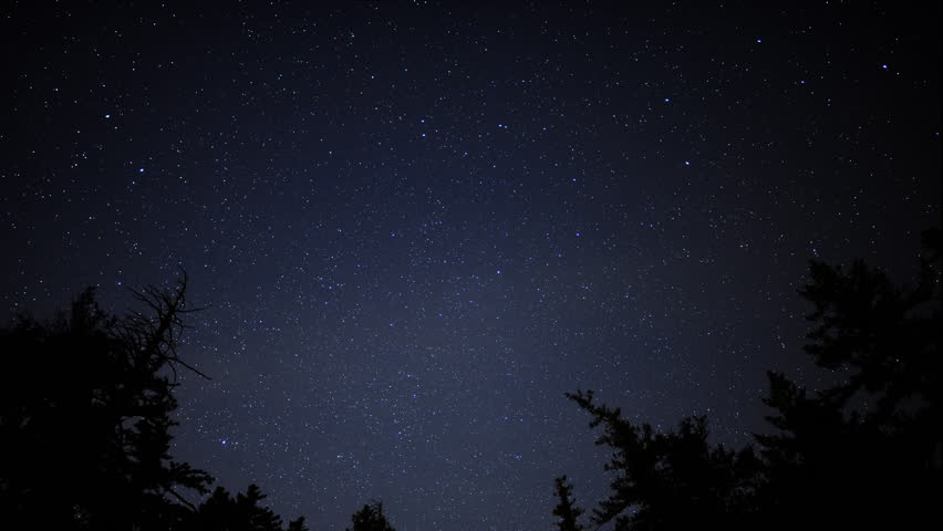 4K Time Lapse of Starry Sky over Alpine Forest -Tilt Down-