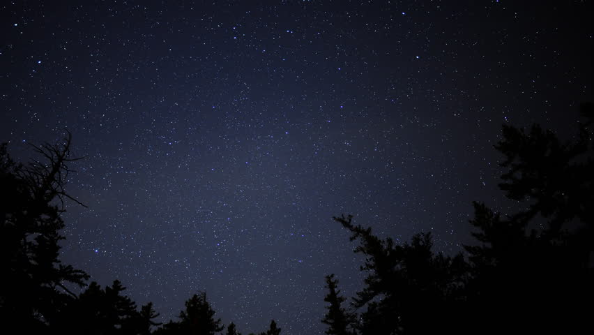 4K Time Lapse of Starry Sky over Alpine Forest -Pan-