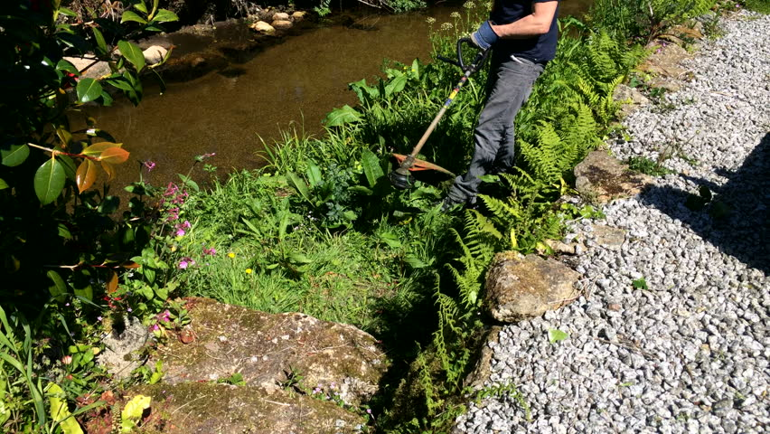 Man clearing garden of weeds and long grass with petrol petrol powered line strimmer.