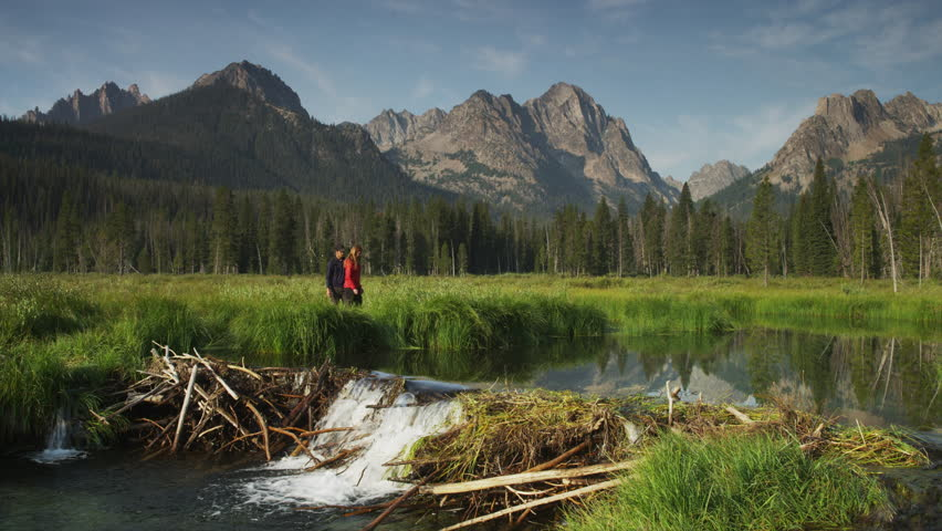 Wide shot of young couple viewing beaver dam on lake with mountains in background / Redfish Lake, Idaho, United States