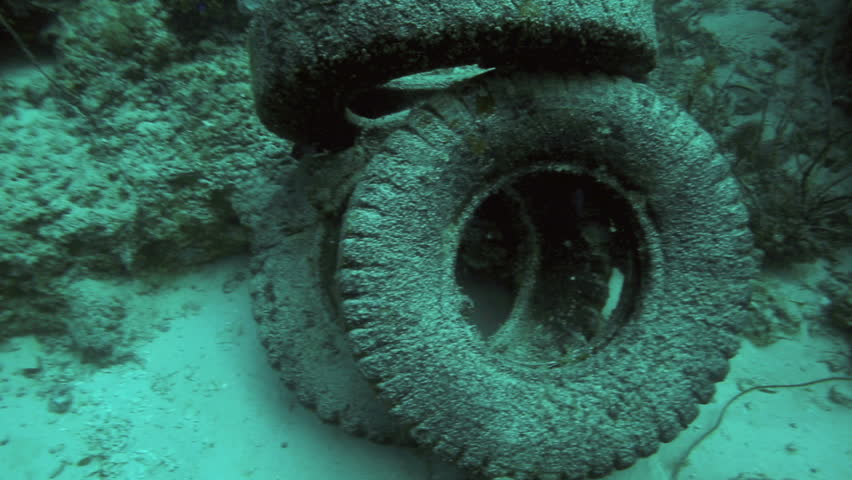 Truck tires in a pile on ocean floor, beginnings on an artificial reef in Panglao Island, Philippines