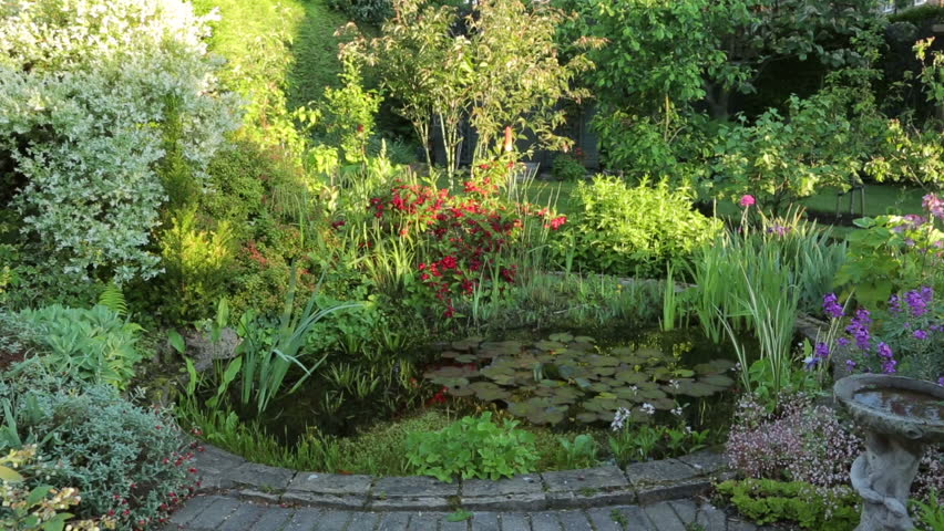 Ornamental garden pond with water lilies and plants in for Ornamental fish pond