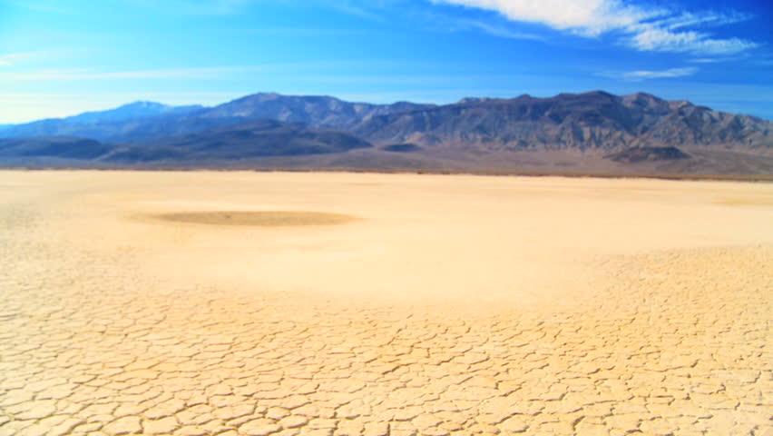 Concept climate change shot of green tree growing in barren desert landscape - HD stock footage clip